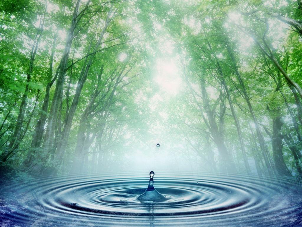 Upaya Kita Menjaga dan Melestarikan Air di Perkotaan