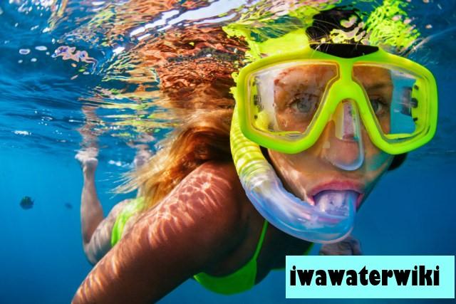 Top 5 Destinasi Snorkeling Terbaik di Indonesia