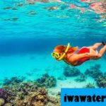 10 Tempat Snorkeling Terbaik Di Nassau, Bahama