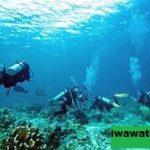 Scuba & Snorkeling Terbaik Di China