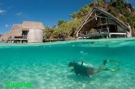Pulau Misool Surganya Diving dan Snorkeling