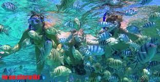 Scuba Diving di Tanjung Benoa Nusa Dua Bali