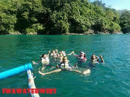 Snorkeling di Pantai Lenggoksono Malang