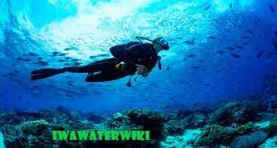 Aktivitas Wisata Snoerkeling di Bangsring Underwater