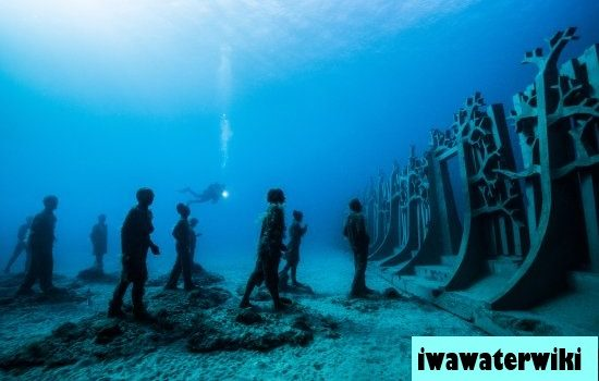 Bermain Dibawah Laut Suaka Laut Nasional AS di Florida Keys